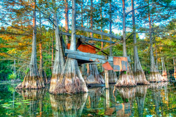 Abandoned Duck Blind on Finch Lake is an EarthCache in Haile, La.
