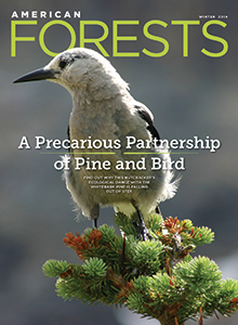 American Forests, Winter 2014, Vol. 120, No. 1