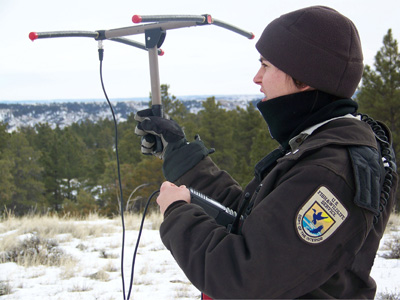 Radio telemetry equipment is used to locate radio-collared wildlife.