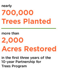 Alcoa 2-Year Statistics - Alcoa Foundation Partnership for Trees 2013