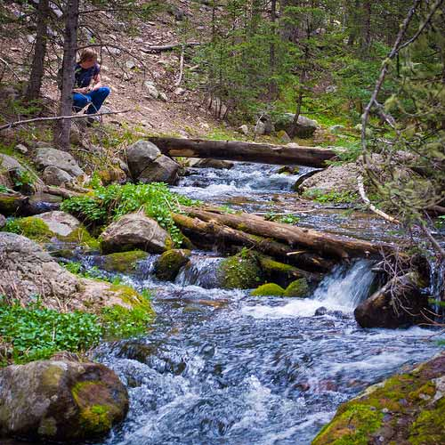A mountain stream in Santa Fe National Park. Photo: Thomas Shahan/Flickr