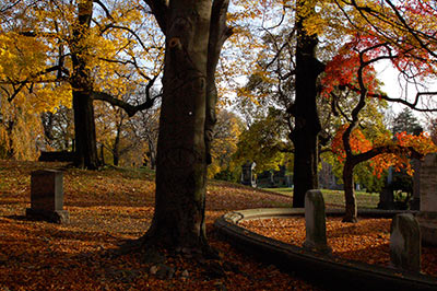 Leaves changing at Green-Wood Cemetery in Brooklyn