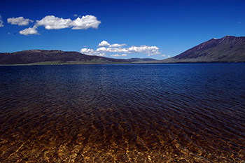 The LWCF is protecting the Henry's Lake Area of Critical Environmental Concern in Idaho from fragmentation.