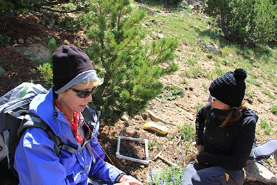 Libby Pansing (right) and Dr. Diana Tomback conduct research on animals' use of whitebark pine seeds