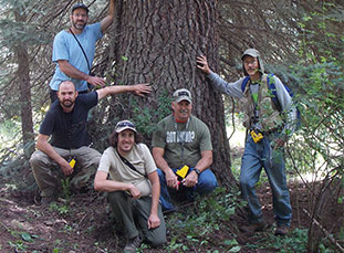 Big tree hunter team