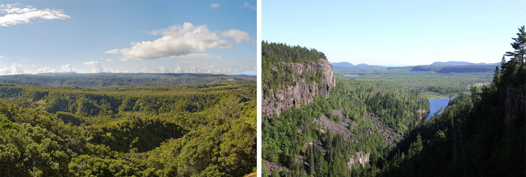Tropical rainforests (left) and northern boreal forests should play a major part in our planet's climate changes solution.