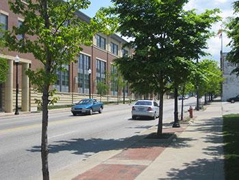 restoring broadway slavic village s tree canopy cleveland ohio