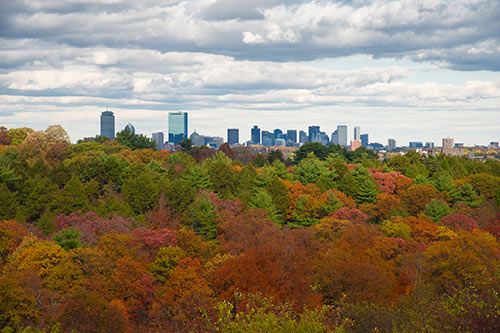 The Boston skyline from Arnold Arboretum