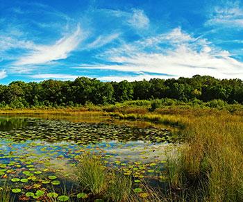 Ennis Lake in Summer.