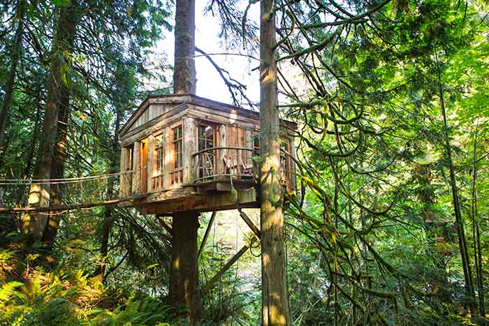 Temple of the Blue Moon, Treehouse Point, Fall City
