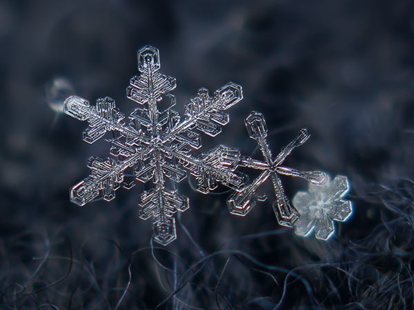 Snowflake photography by Alexey Kljatov