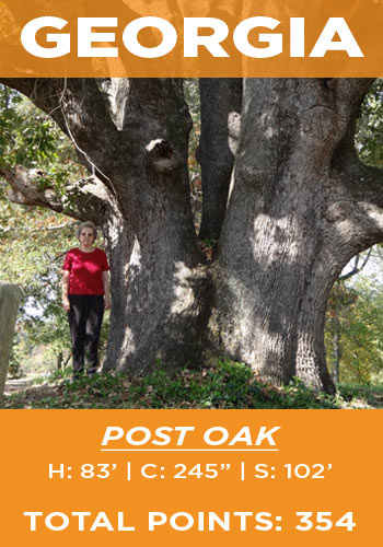 Georgia - Post oak