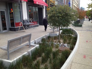 Before the abstract benefits of urban forests were well understood, we knew about their ability to filter trash and toxins from stormwater on its way to waterways. Such knowledge has led to the increase of green infrastructure like this bioswale in D.C., replacing storm drains which led directly into the sewer system.