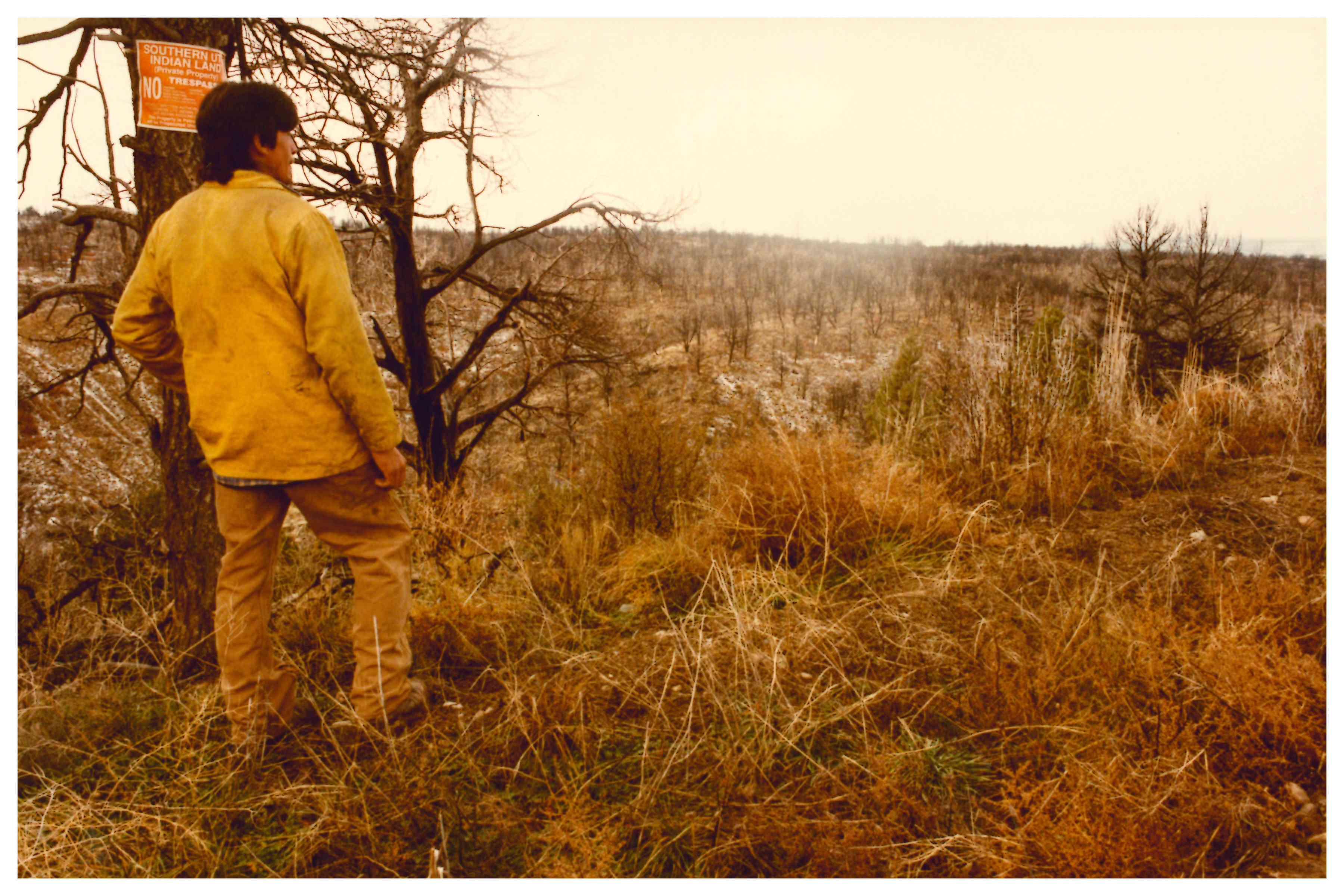 Ute man staring into a barren field