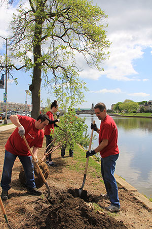 Asbury Park - Bank of America_Community ReLeaf Volunteer planting
