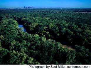Trinity Forest in Dallas, Texas