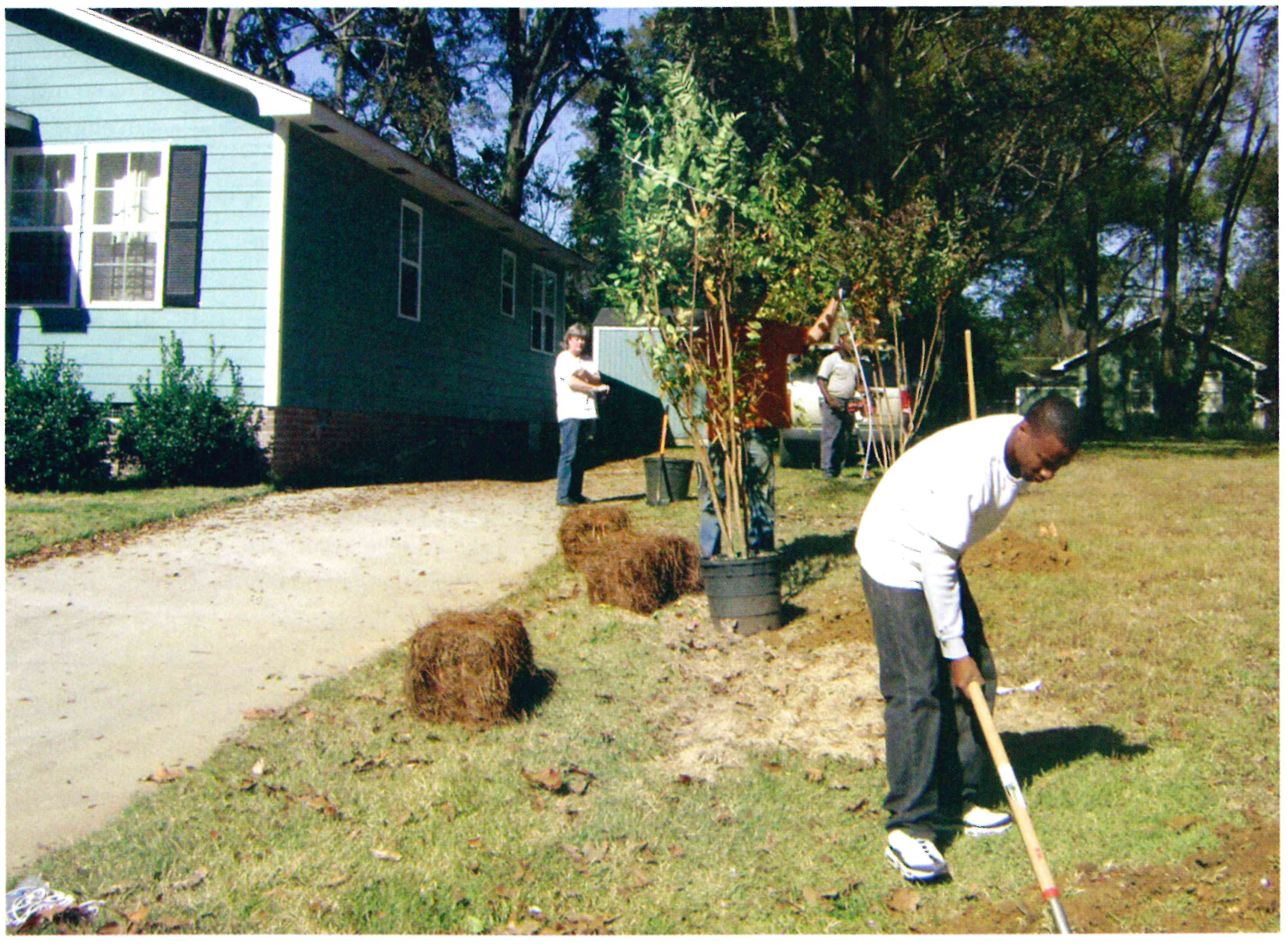 Oprah's Angel Network joins with AF to plant trees