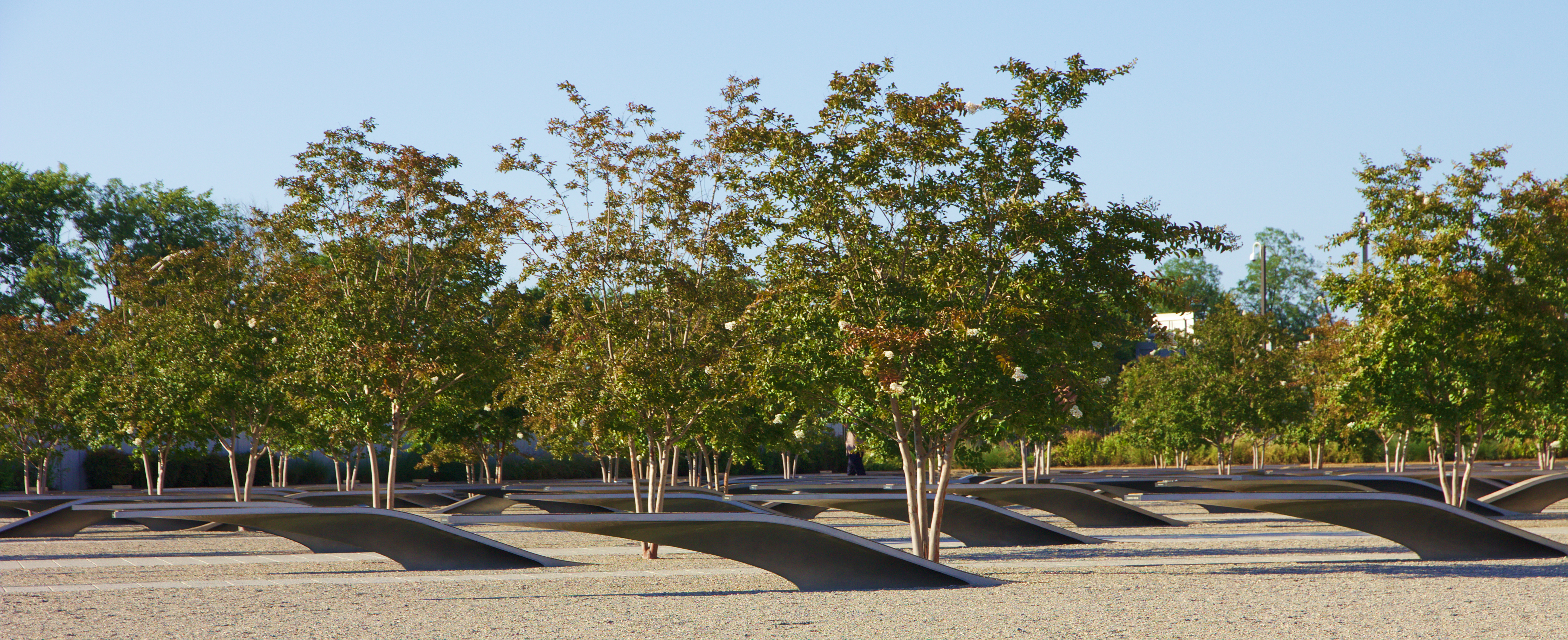 Trees planted at the Pentagon in Washington, D.C. in memory of those who lost their lives on September 11, 2001