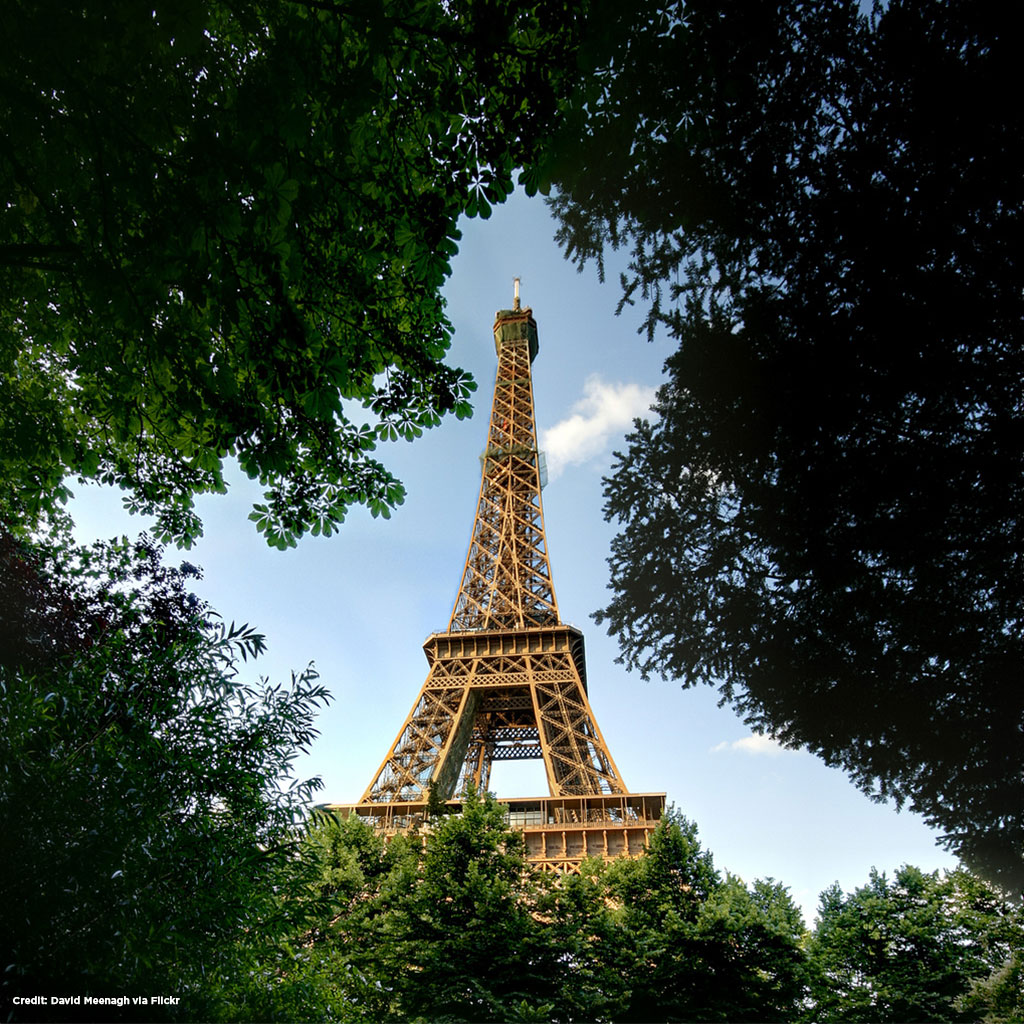 Eiffel Tower surrounded by trees.