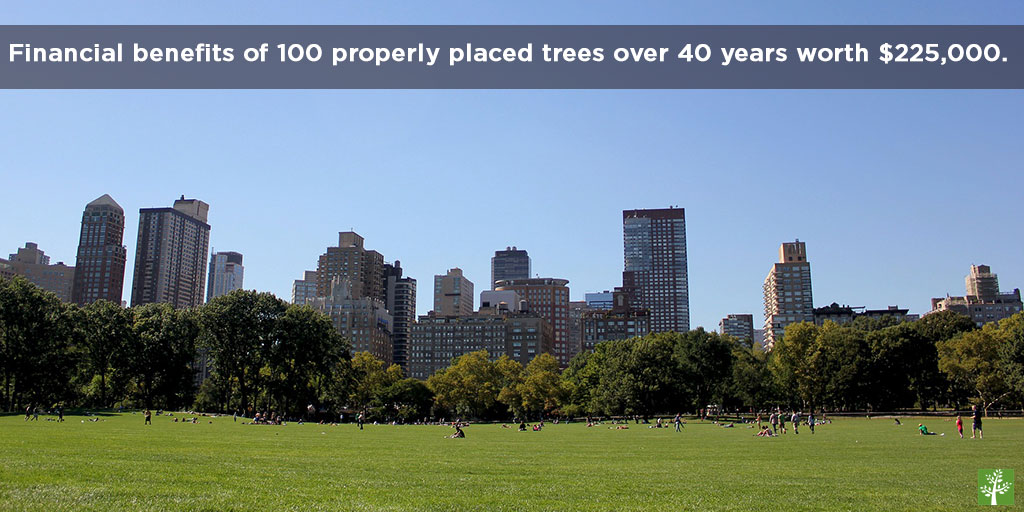 Financial benefits of 100 properly placed trees over 40 years worth $225,000.