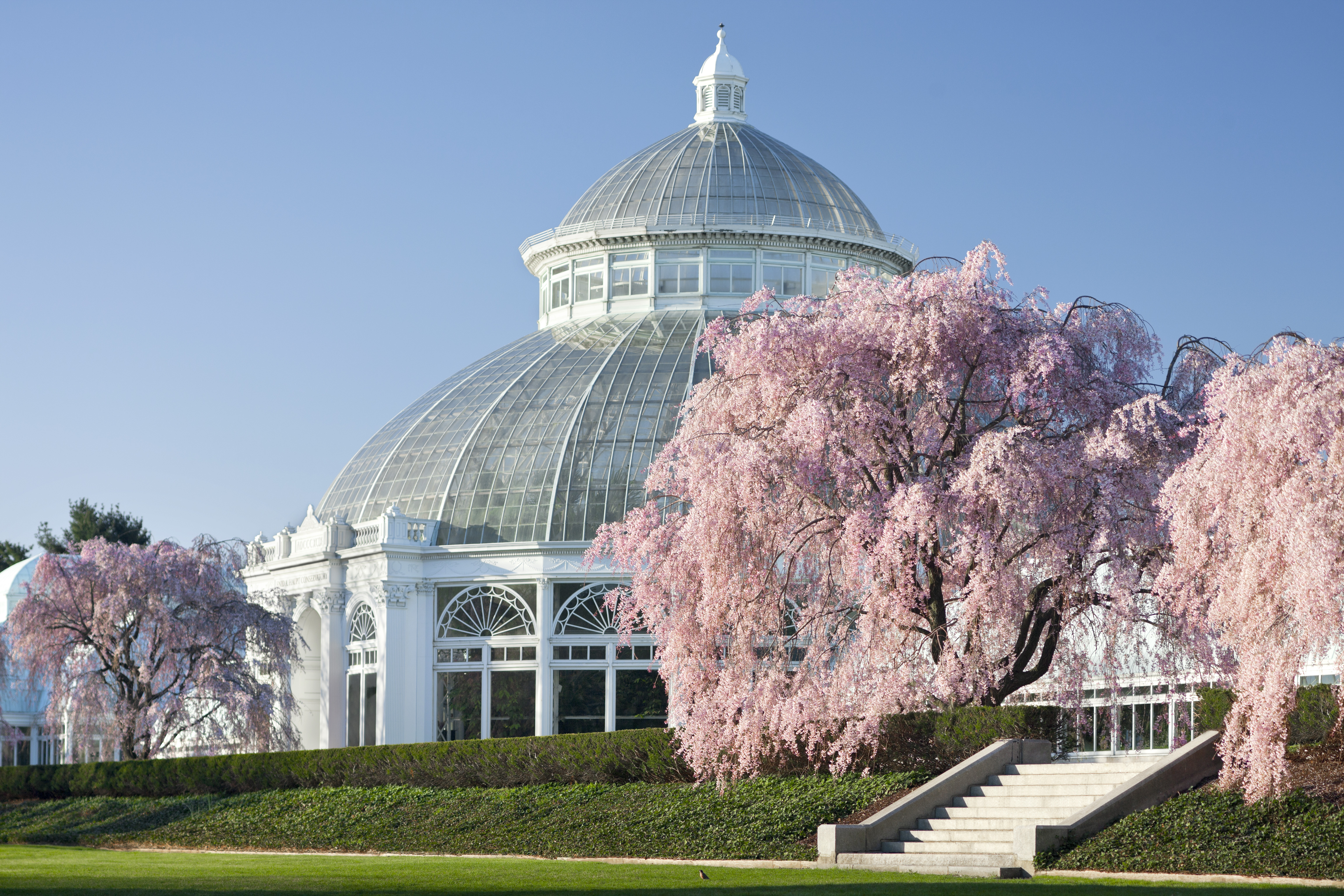 Enid A. Haupt Conservatory at The New York Botanical Garden