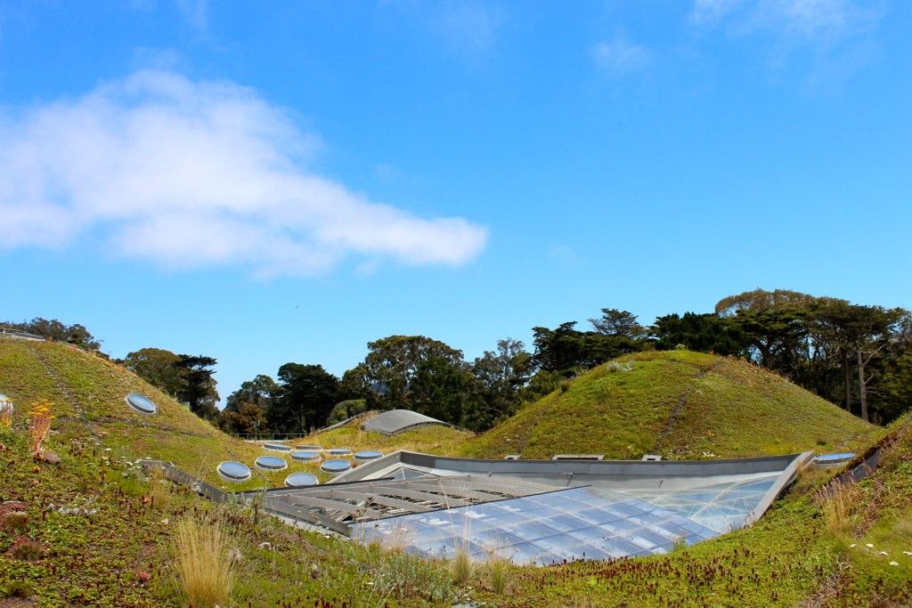 La Academia de Ciencias de California Living Roof