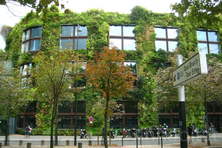 Museé du Quai Branlys Vertical Garden