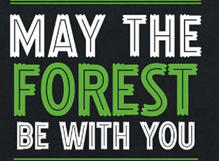 """Thumbnail_""""May-the-Forest-Be-with-You""""-(And-Why-It-Matters)"""
