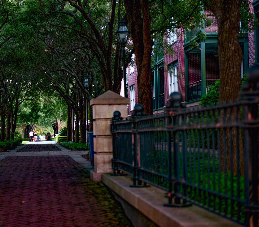 Neighborhood with trees