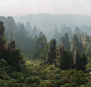 Zhangjiajie National Forest