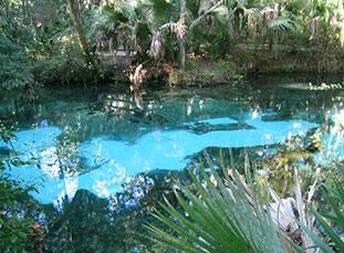 Juniper Springs, Ocala National Forest, Florida
