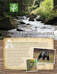 2013 Year in Review Cover