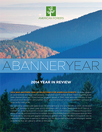 2014 Year in Review Cover