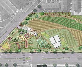 DC Urban Farm renderings