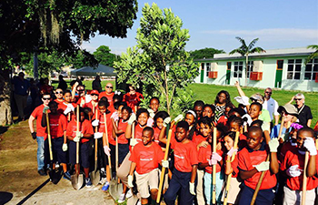 Miami Community ReLeaf: Liberty City planting
