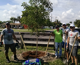 Community ReLeaf: Miami - Bacardi volunteer planting June 2016