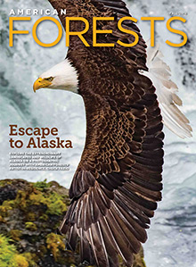 American Forests Magazine Fall 2016 Cover