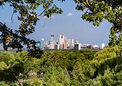 Minneapolis urban forest - photo credit Chuck Fazio