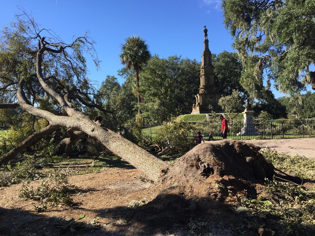 Savannah, GA Hurricane Matthew damage