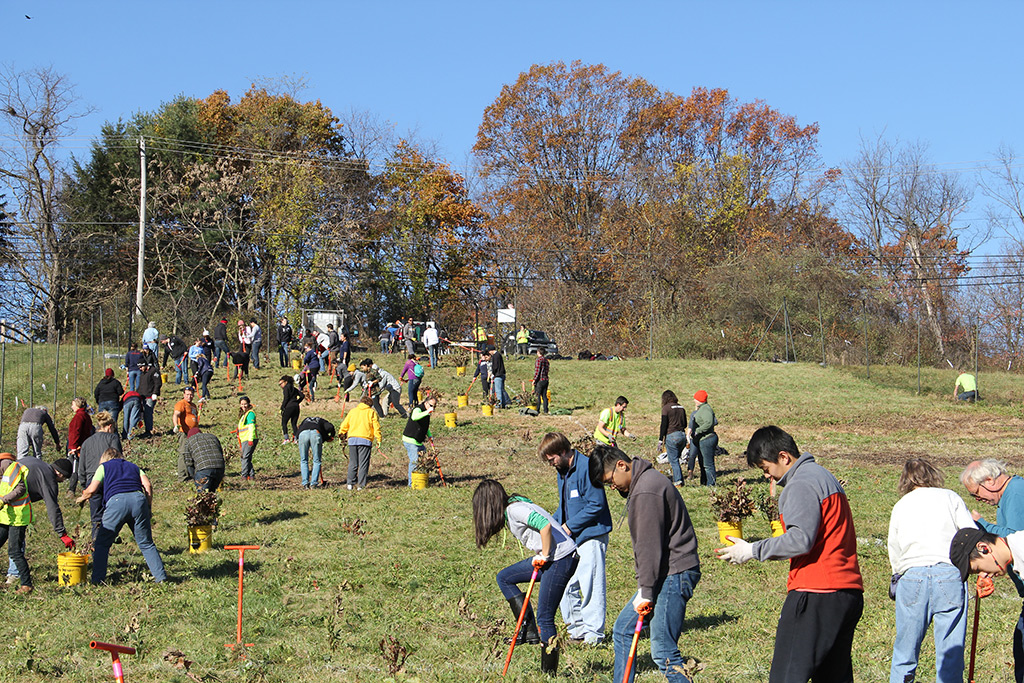 The site of American Forests' planting in the Audubon Greenway outside of Pittsburgh.