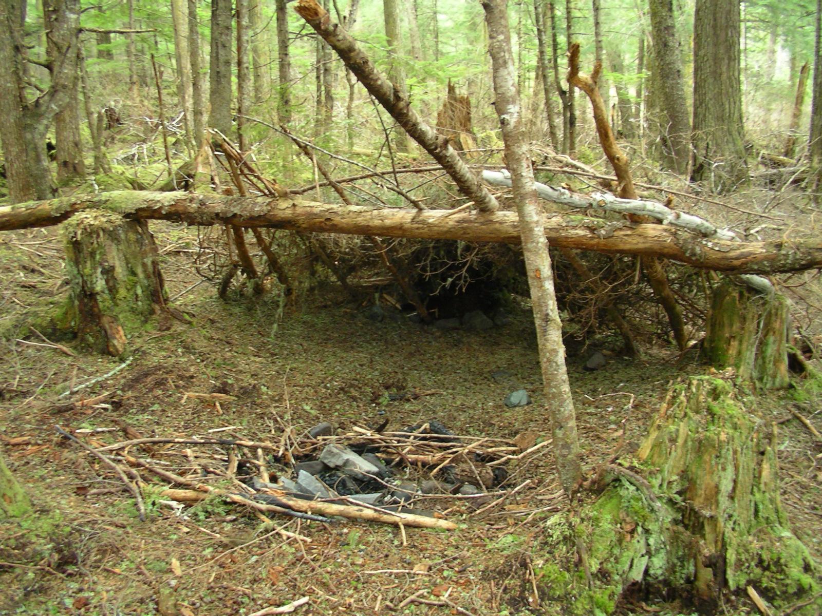 Improvised Shelter