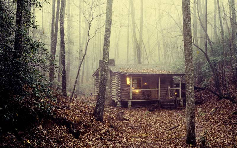 Scary Movies Filmed In Forests American Forests