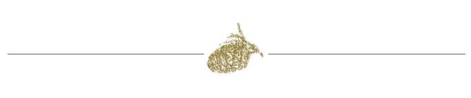 Pine cone icon