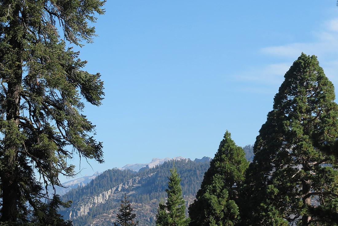 View of the mountains from Williams' hike.
