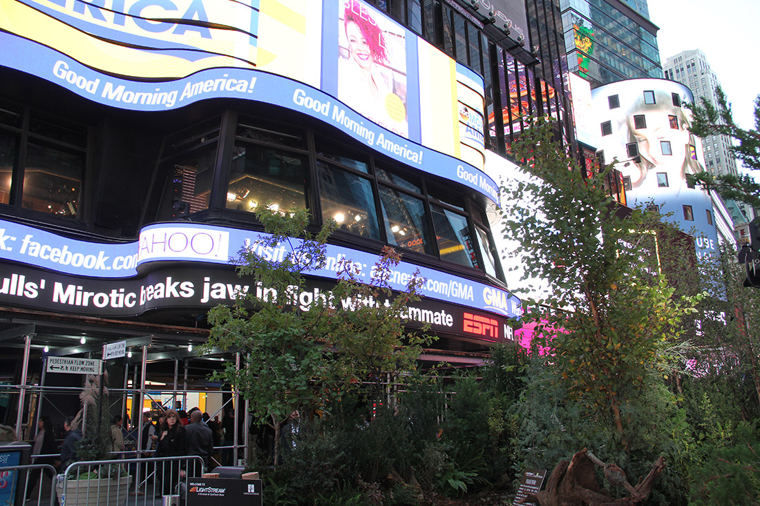 Forest of Dreams pop-up in Times Square