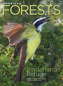 American Forests Summer 2018 Issue Cover