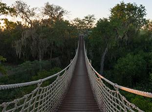 Bridge in LRGV