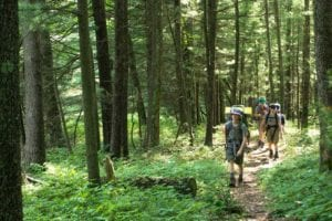 Group of hikers on a trail