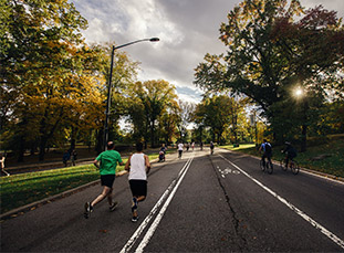 urban forest runners