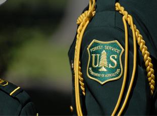 USFS Badge